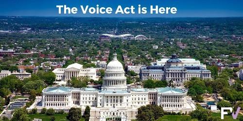 VOICE Amendment Act Hearing - Nov. 18