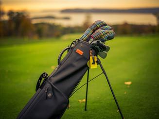 Stitch golf bag & Seamus headcovers
