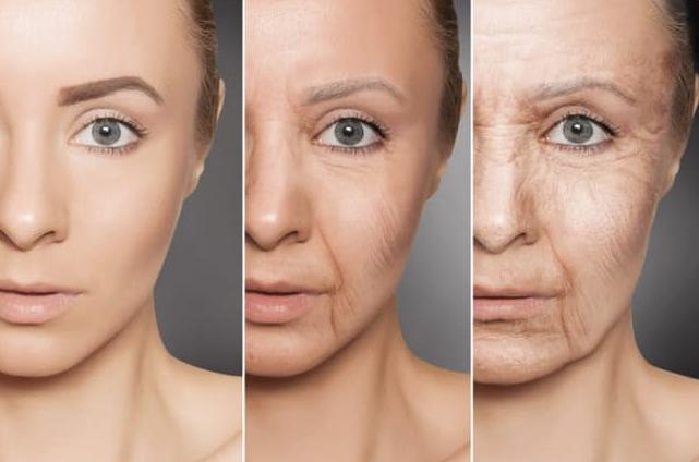 【老化を進める主な原因AGEとは?】