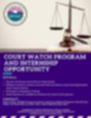 VIDVSAC- COURT WATCH (1).png