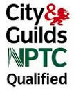 NPTC Qualified Tree Surgeon covering Inverness, Nairn and the Scottsh Highlands