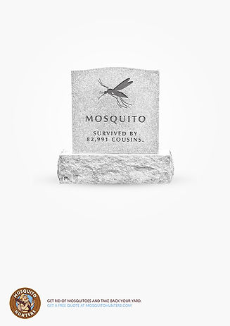 LDR-RIP-Mosquito-3-A4.jpg