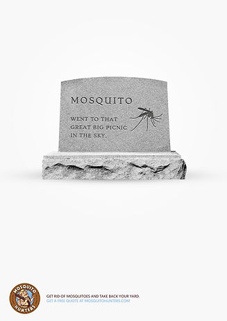 LDR-RIP-Mosquito-2-A4.jpg