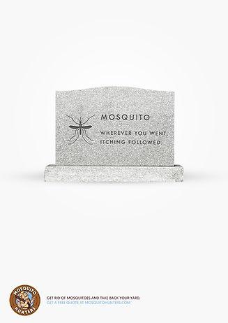 LDR-RIP-Mosquito-1-A4.jpg