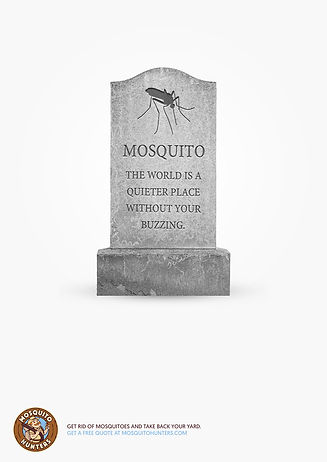 LDR-RIP-Mosquito-4-A4.jpg