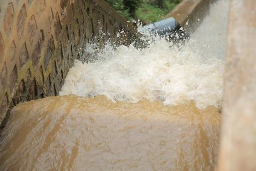 Run of the River Gaseke.jpg