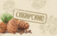 Дизайн упаковки кедровых орешков