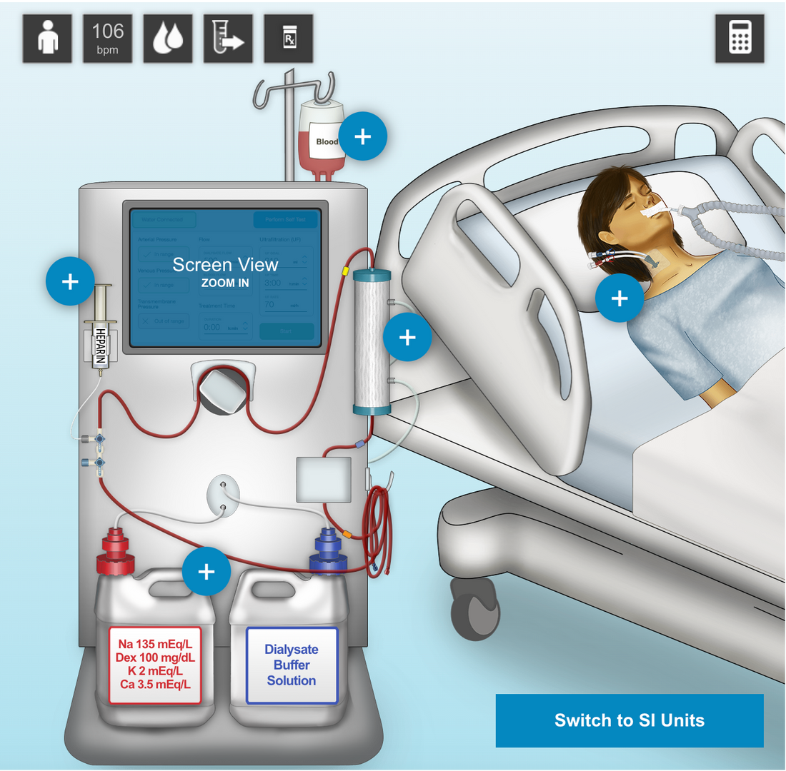 HEMODIALYSIS SIMULATOR