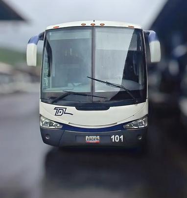 Retrato Autobus Ejecutivo