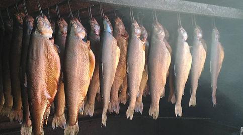 риба4.jpg