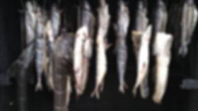 риба 3.jpg