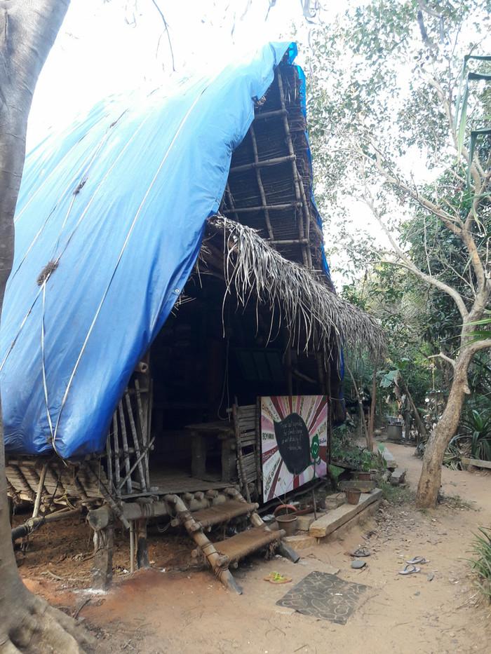 Un jour à Sadhana Forest