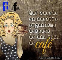 #TliFe Qué sucede con nuestro organismo después de una taza de café ☕
