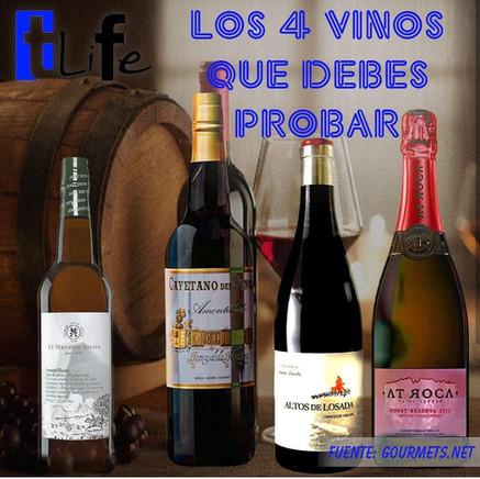 Los 4 vinos que debes probar