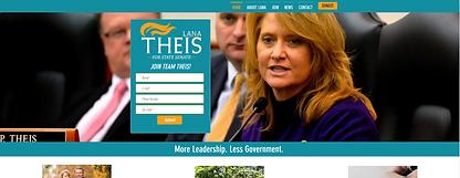 Theis_Website.PNG