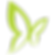 Icon_Butterfly_green-01.png