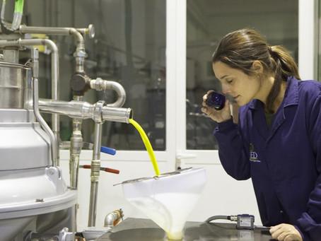 Extra vierge olijfolie, productieproces