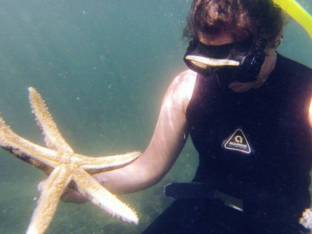 Diving in Pucu