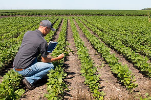 Farm to table traceability technologies