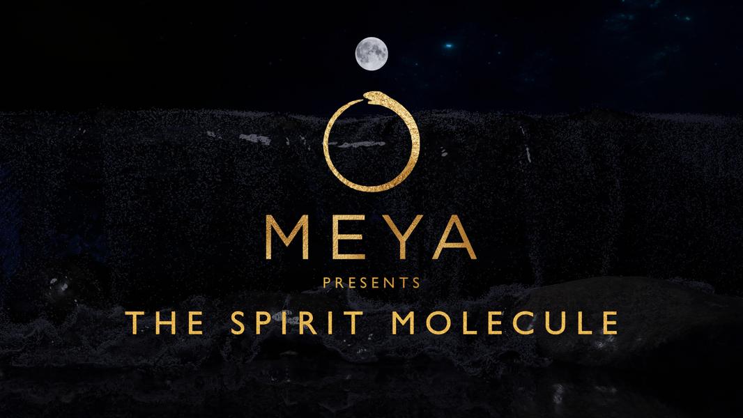 The_spirit_molecule_thumbnail.png