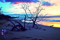 Blues Tree