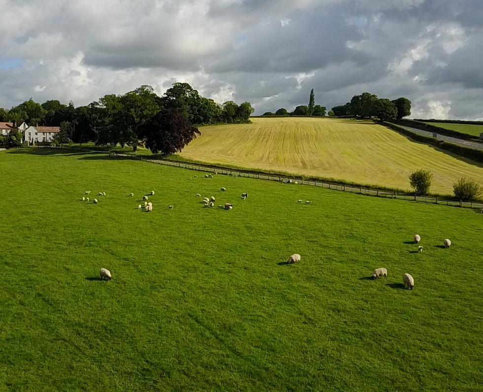 Scalesceugh Villas, the best place to retire in Cumbria