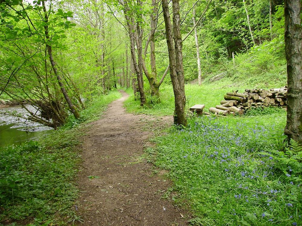 Cumbria Wildlife Trust, Scalesceugh Hall & Villas, Retire To Cumbria, Retirement Village Cumbria