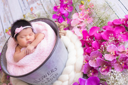 Newborn Eloise-5