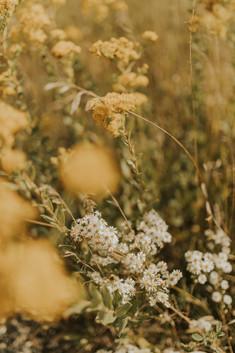 vetters flowers.JPG
