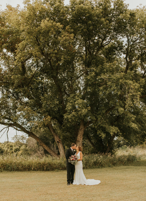 vetters tree.JPG