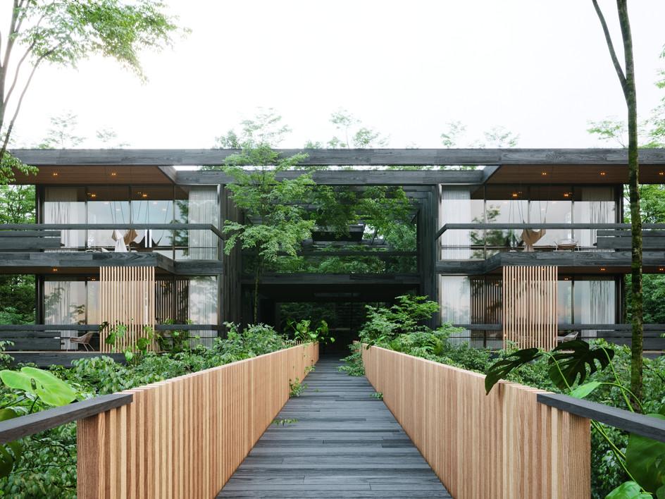 AVA Hotel & Spa /hotel de selva