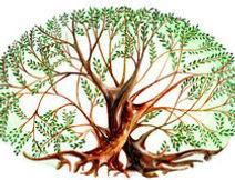 couples-des-arbres-70286368.jpg