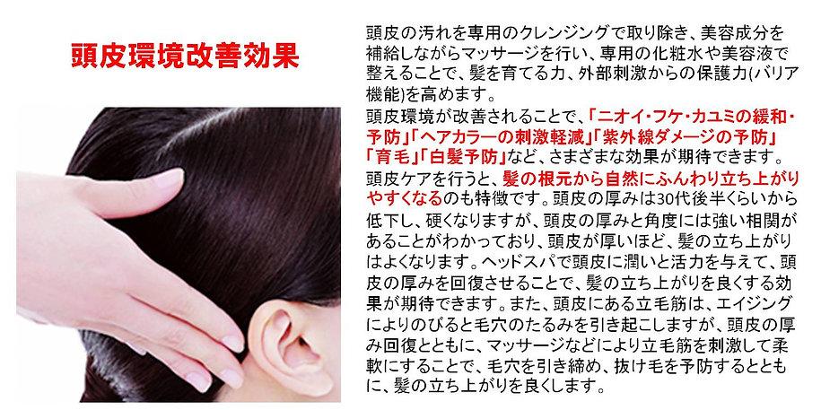 頭皮環境改善効果 頭皮の汚れを専用のクレンジングで取り除き、美容成分を補給しながらマッサージを行い、専用の化粧水や美容液で整えることで、髪を育てる力、外部刺激からの保護力を高めます。頭皮環境が改善されることで、「ニオイ・フケ・カユミの緩和・予防」「ヘアカラーの刺激軽減」「紫外線ダメージの予防」「育毛」「白髪予防」など、さまざまな効果が期待できます。頭皮ケアを行うと、髪の根元から自然にふんわり立ち上がりやすくなるのも特徴です。