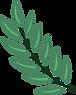 Plantar