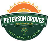 peterson grove.png