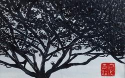 SINGAPORE TREE