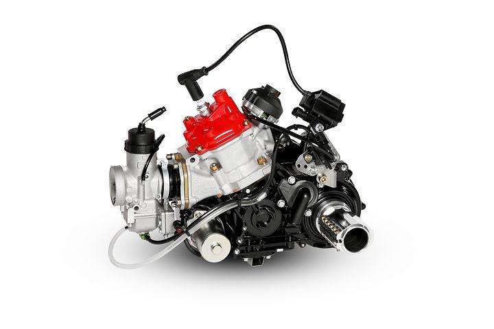 Rotax 125 MAX DD2.jpg