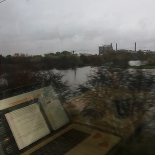 What I Saw From The Train Back Home