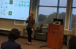 Morgan Chandler - UNCC 3MT 2019