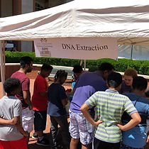 2019 NC Science Expo - Strawberry DNA Ex