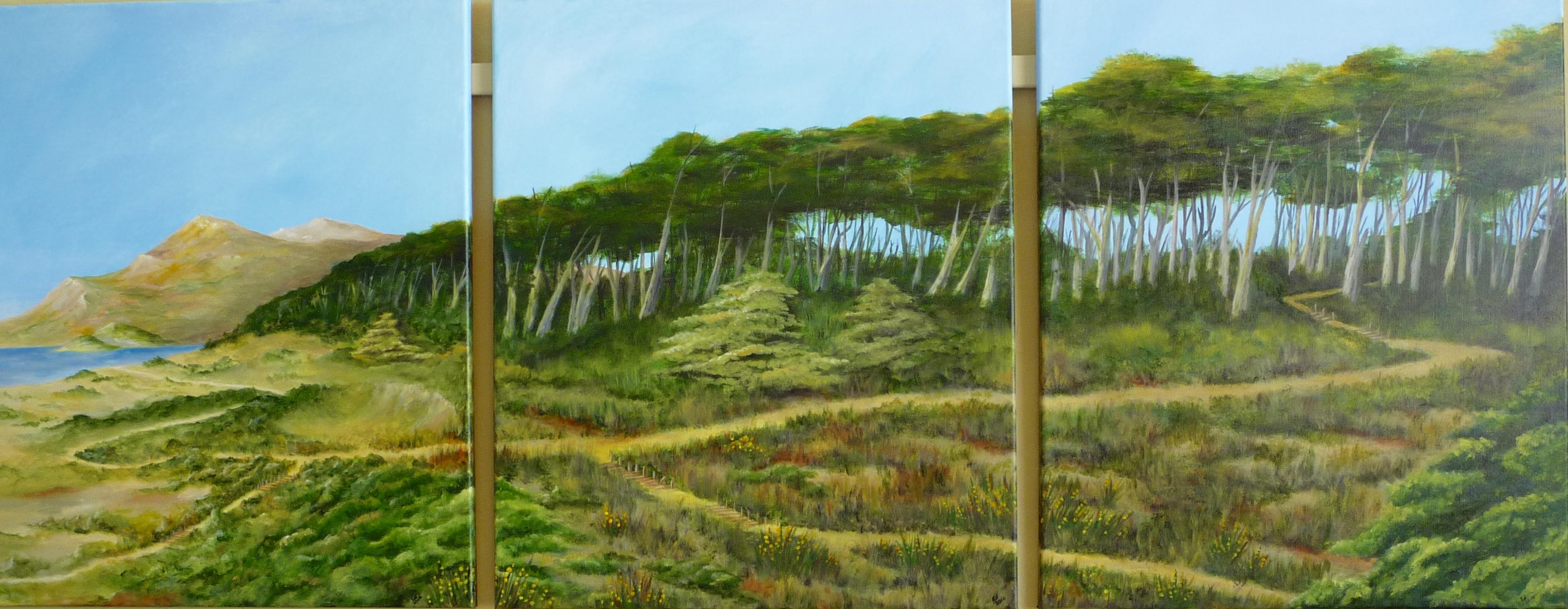 Trails at LandsEnd