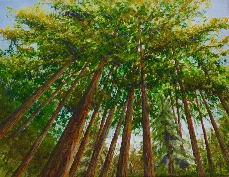 Redwood Grove Prespective (similar)