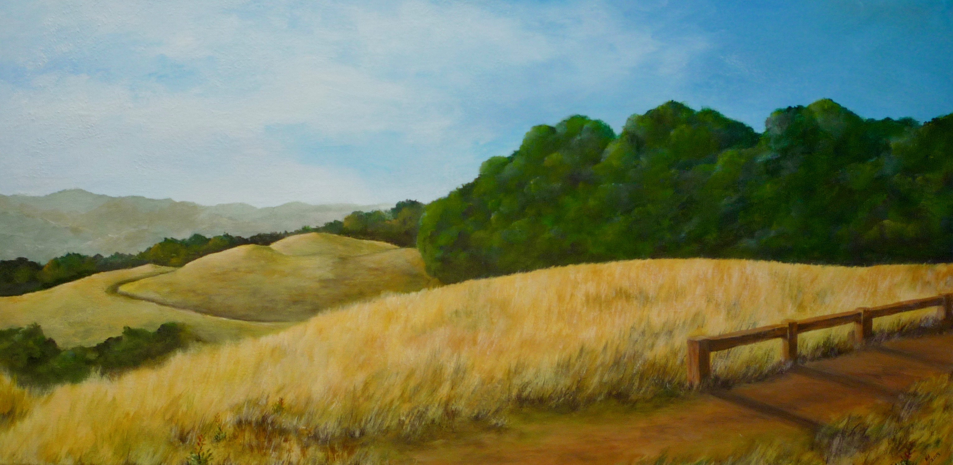 Hill Top Meadow