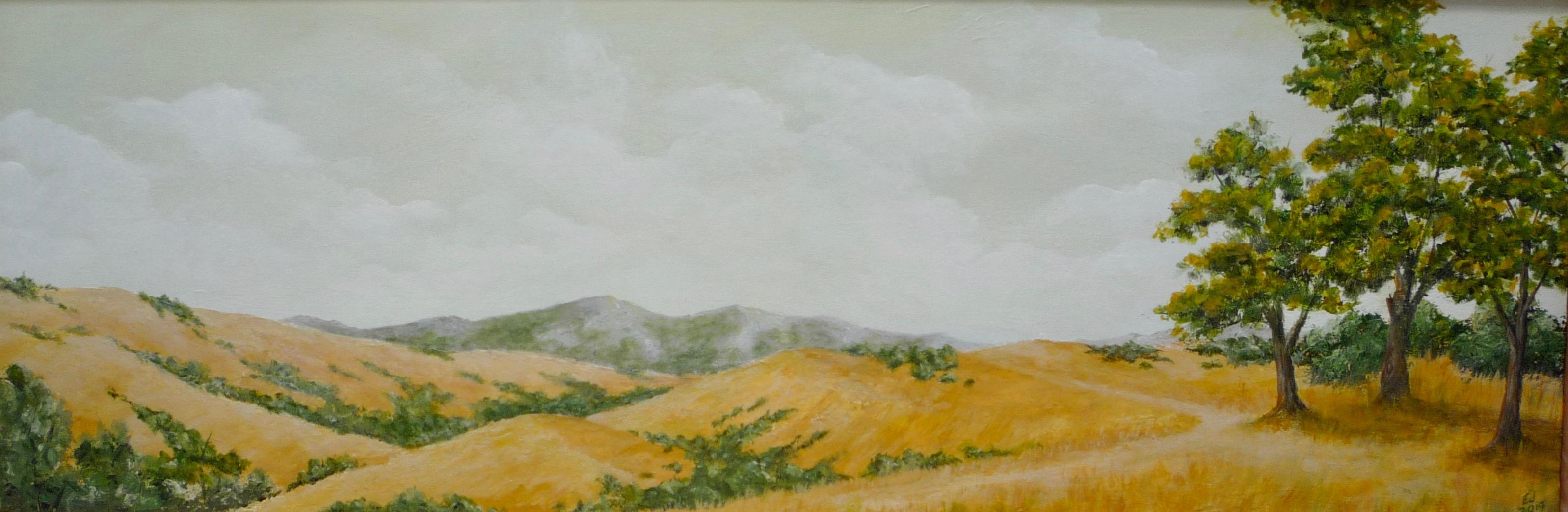 California Vista