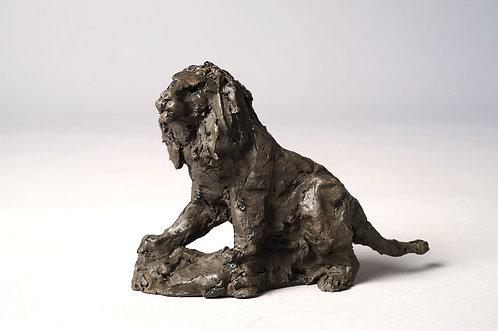 Cade - Lion assis, bronze