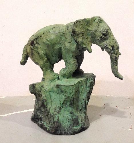 Cade, Eléphant sur rocher - elephant on rock