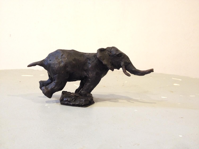 Elephant cirque