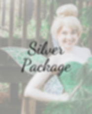Silver Package (2).png