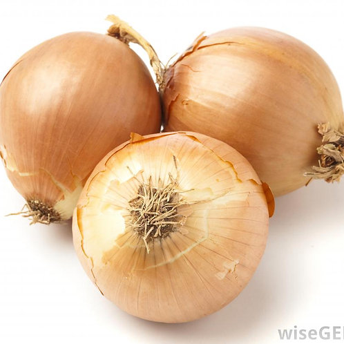 Spanish Onion - 1 pc