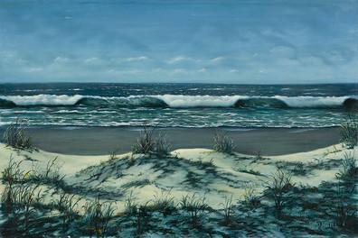 Sand Dunes and Beach